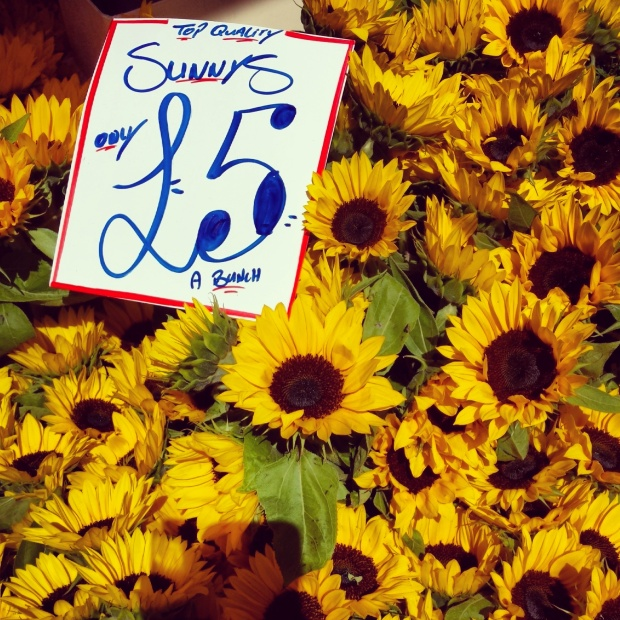 sunflowers-for-sale