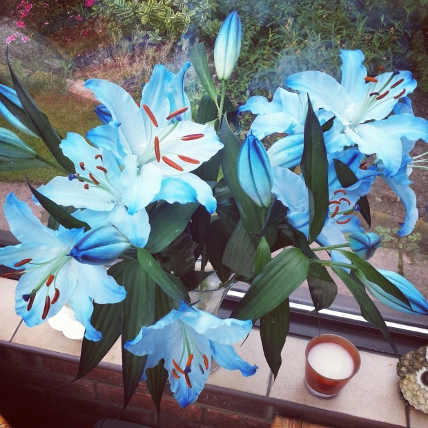 blue-lillies