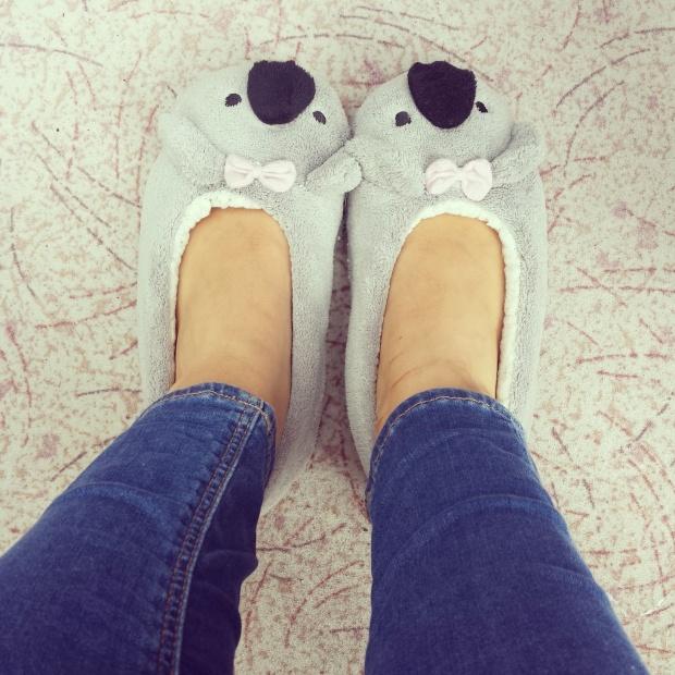 koala-slippers