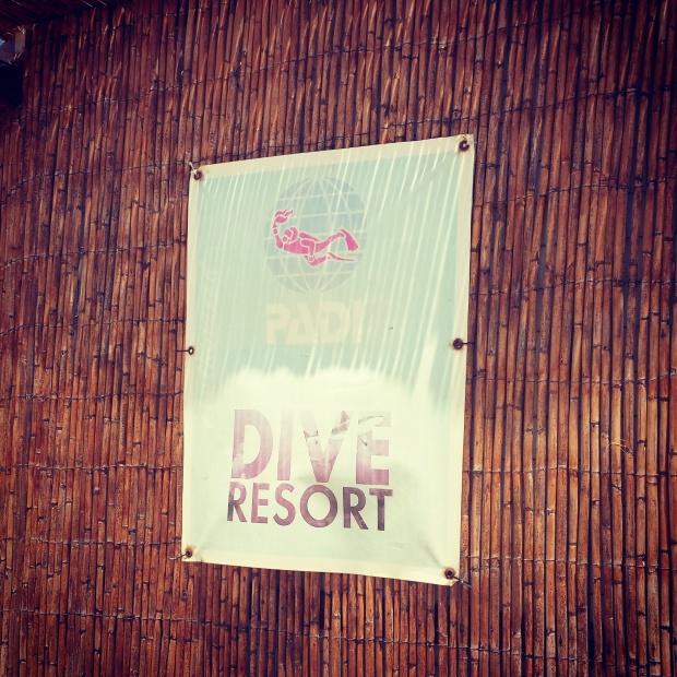 padi-dive-poster