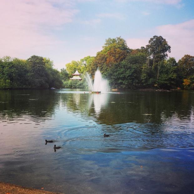 the-lake-at-vicky-park