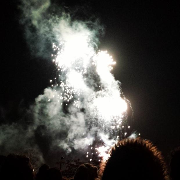 ally-pally-fireworks