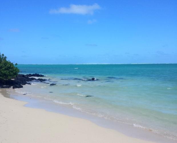 il-aux-cerf-mauritius (4)