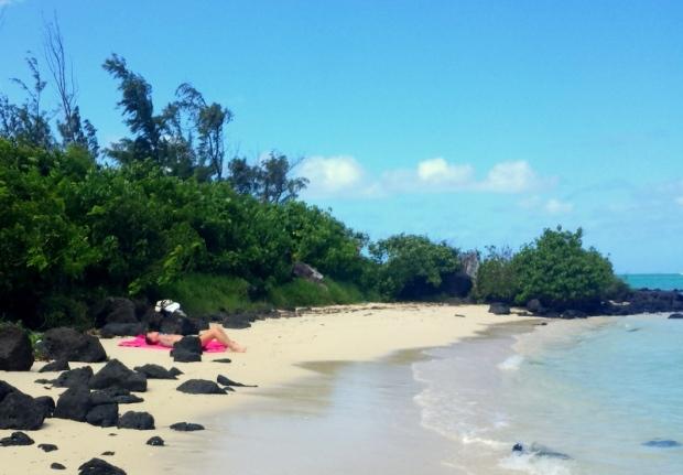 il-aux-cerf-mauritius (5)