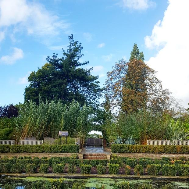 Garden at the Horniman Musuem