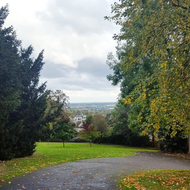 View of Forest Hill